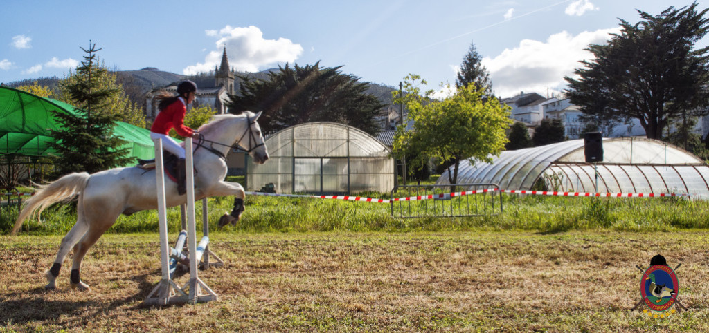 Os Parrulos_mondonedo_hipica_clases equitacion_54