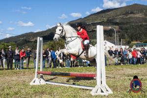 Os Parrulos_mondonedo_hipica_clases equitacion_55