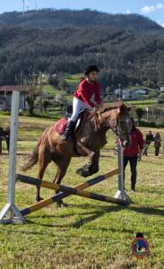 Os Parrulos_mondonedo_hipica_clases equitacion_58