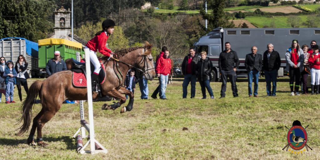 Os Parrulos_mondonedo_hipica_clases equitacion_59