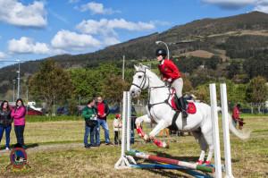 Os Parrulos_mondonedo_hipica_clases equitacion_6