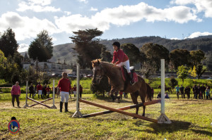 Os Parrulos_mondonedo_hipica_clases equitacion_61