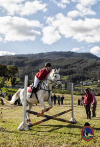 Os Parrulos_mondonedo_hipica_clases equitacion_65