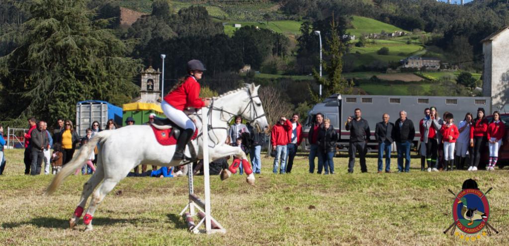 Os Parrulos_mondonedo_hipica_clases equitacion_66