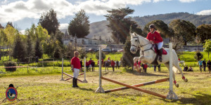Os Parrulos_mondonedo_hipica_clases equitacion_68