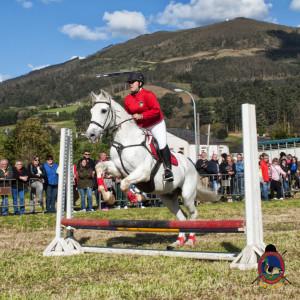 Os Parrulos_mondonedo_hipica_clases equitacion_69