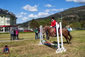 Os Parrulos_mondonedo_hipica_clases equitacion_7