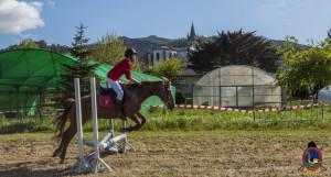 Os Parrulos_mondonedo_hipica_clases equitacion_74