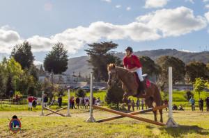 Os Parrulos_mondonedo_hipica_clases equitacion_75