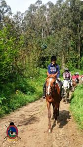 Rutas a caballo_La Coruna_17