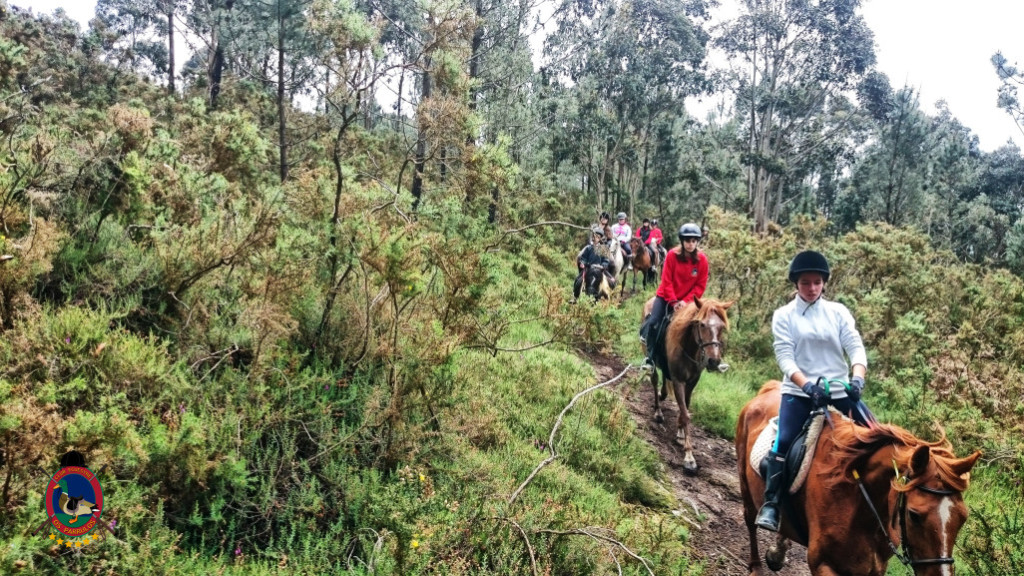 Rutas a caballo_La Coruna_35