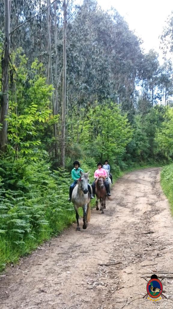 rutas a caballo.2.1