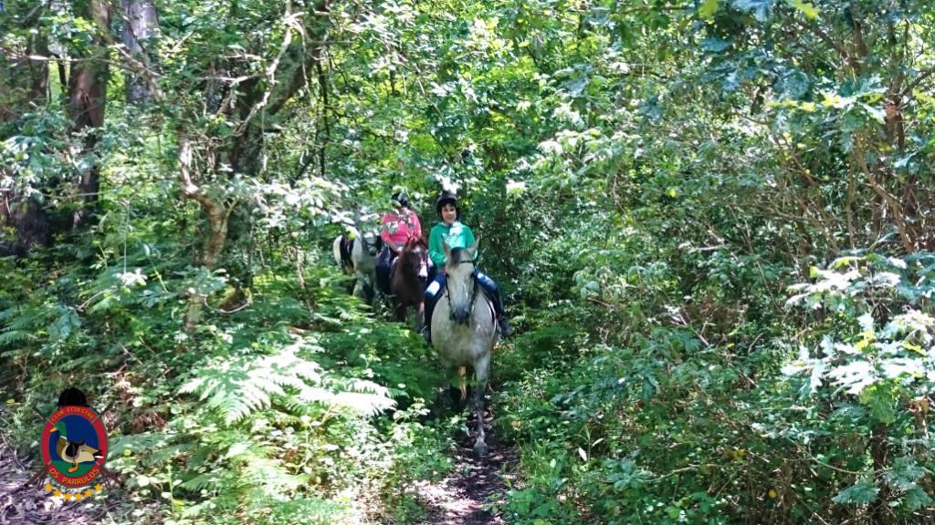 rutas a caballo.2.11