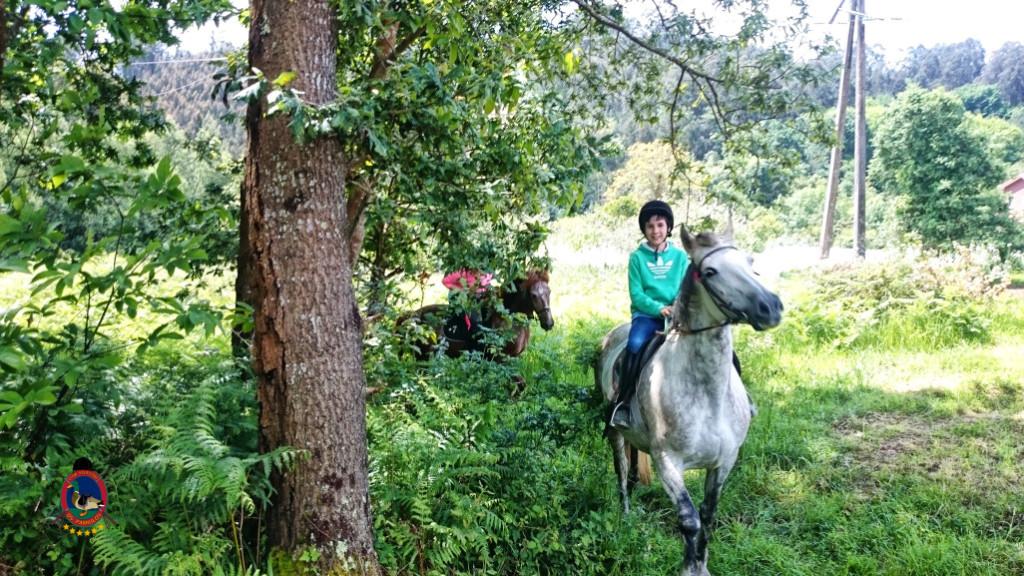rutas a caballo.2.15