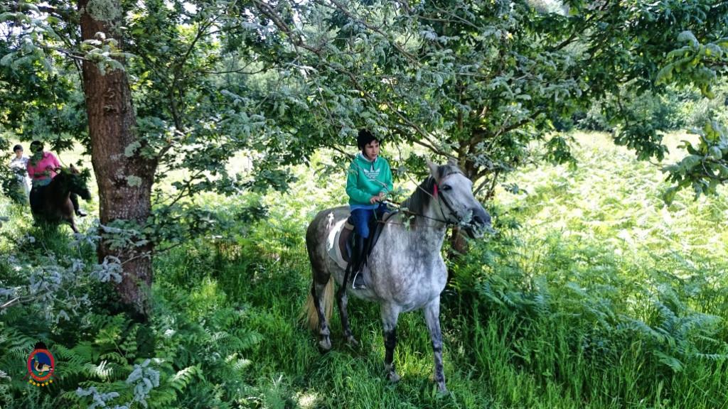 rutas a caballo.2.16