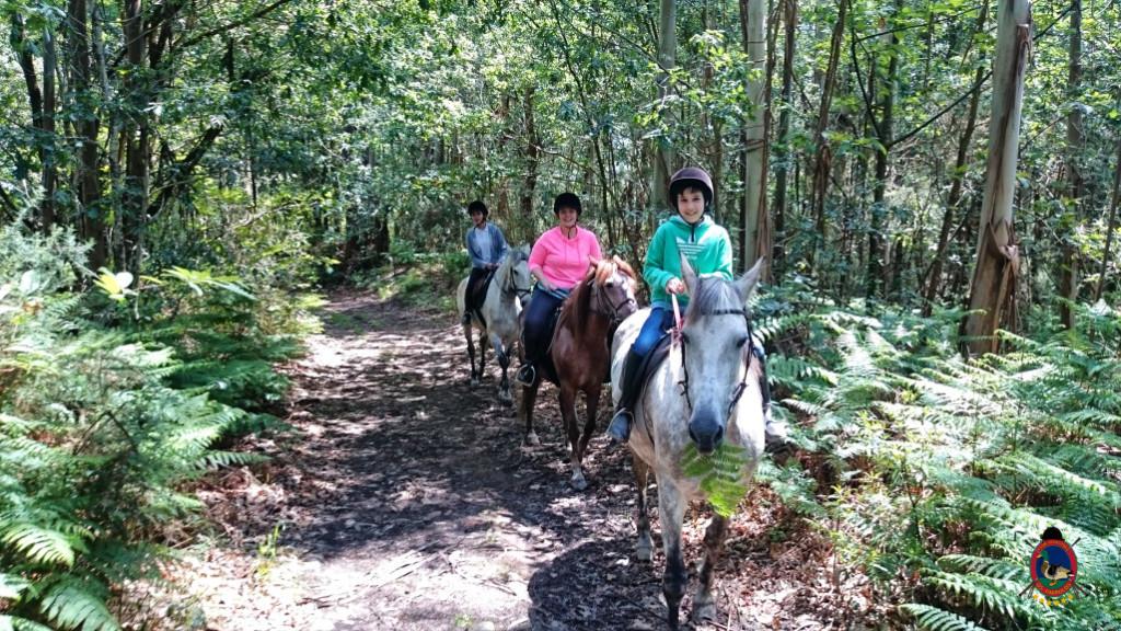rutas a caballo.2.19