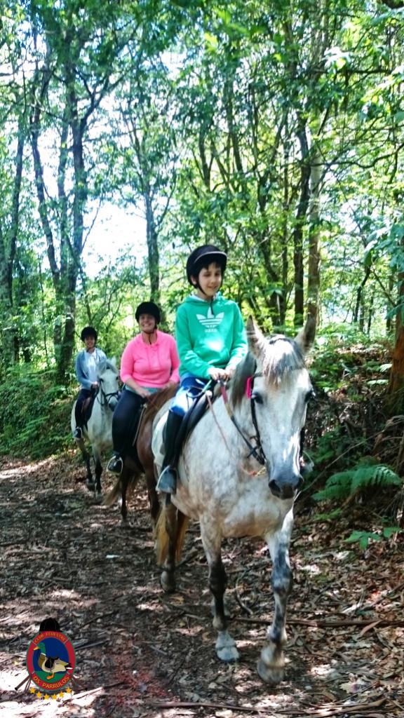rutas a caballo.2.20