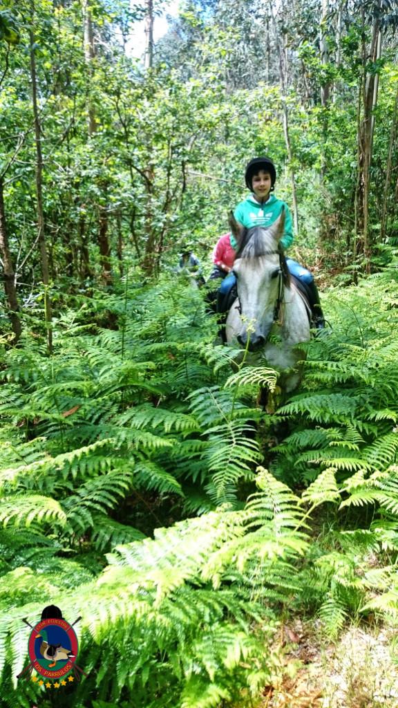 rutas a caballo.2.5