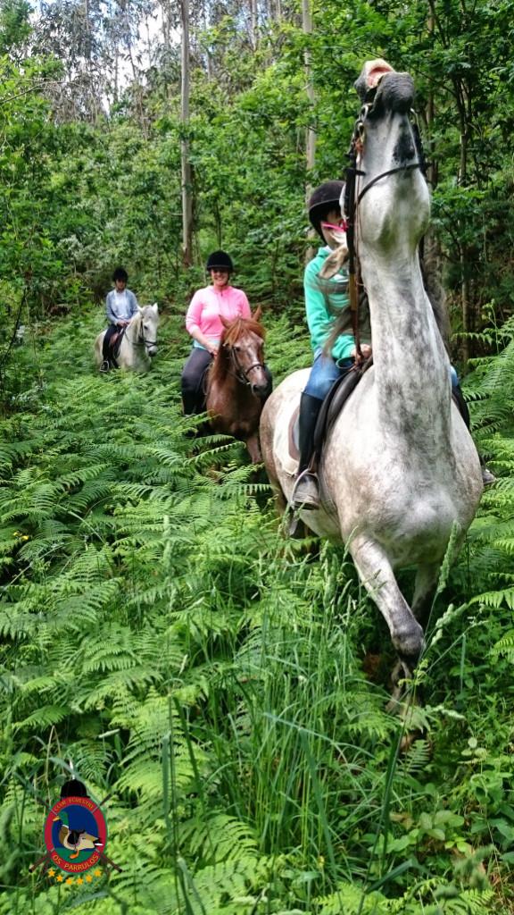 rutas a caballo.2.8