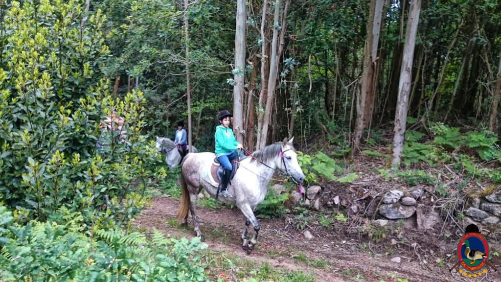 rutas a caballo.2.9