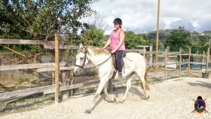 clases de equitacion la coruna_os parrulos_25