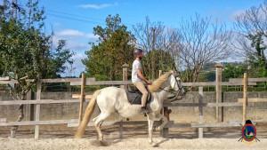 clases de equitacion la coruna_os parrulos_31
