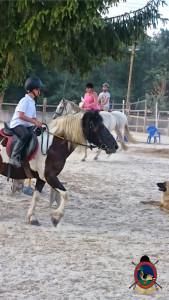 clases de equitacion la coruna_os parrulos_39