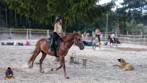 clases de equitacion la coruna_os parrulos_41