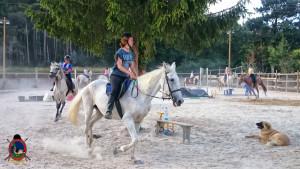 clases de equitacion la coruna_os parrulos_43