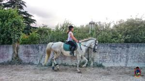 clases de equitacion la coruna_os parrulos_50