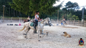 clases de equitacion la coruna_os parrulos_clases de equitacion la coruna_os parrulos_42