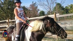 Clases de equitación_paseos a caballo_hipica La Coruna_Os Parrulos_11