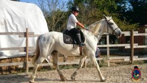 Clases de equitación_paseos a caballo_hipica La Coruna_Os Parrulos_28