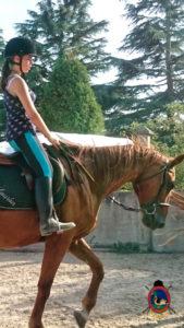 Clases de equitación_paseos a caballo_hipica La Coruna_Os Parrulos_30