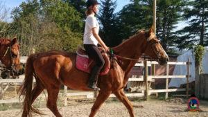 Clases de equitación_paseos a caballo_hipica La Coruna_Os Parrulos_31