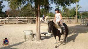 Clases de equitación_paseos a caballo_hipica La Coruna_Os Parrulos_32