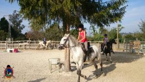 Clases de equitación_paseos a caballo_hipica La Coruna_Os Parrulos_33