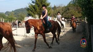 Clases de equitación_paseos a caballo_hipica La Coruna_Os Parrulos_57