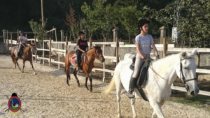 Clases de equitación_paseos a caballo_hipica La Coruna_Os Parrulos_60