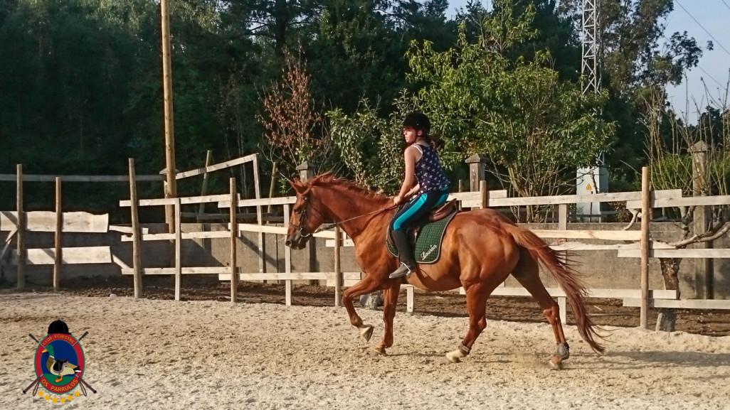 Clases de equitación_paseos a caballo_hipica La Coruna_Os Parrulos_65