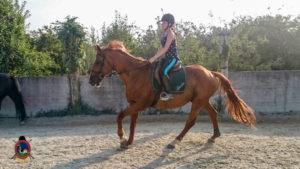 Clases de equitación_paseos a caballo_hipica La Coruna_Os Parrulos_67