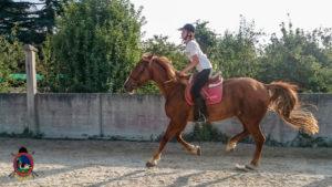 Clases de equitación_paseos a caballo_hipica La Coruna_Os Parrulos_69