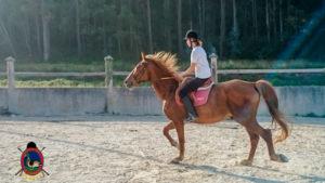 Clases de equitación_paseos a caballo_hipica La Coruna_Os Parrulos_70