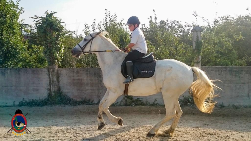 Clases de equitación_paseos a caballo_hipica La Coruna_Os Parrulos_73