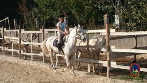 Clases de equitación_paseos a caballo_hipica La Coruna_Os Parrulos_75