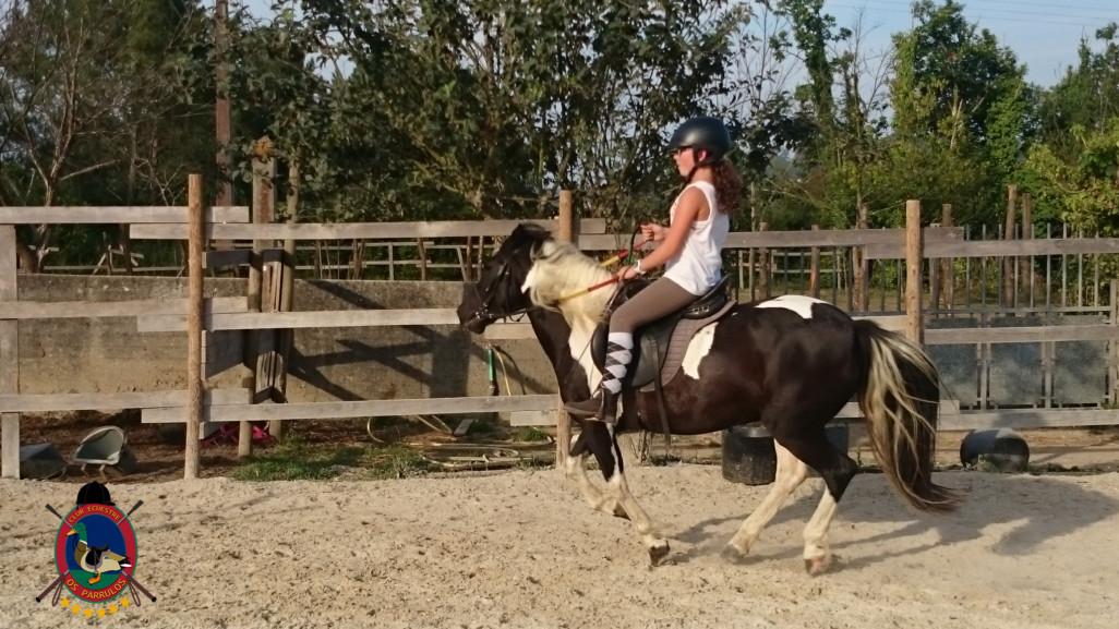 Clases de equitación_paseos a caballo_hipica La Coruna_Os Parrulos_83