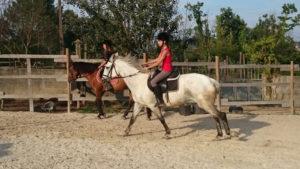 Clases de equitación_paseos a caballo_hipica La Coruna_Os Parrulos_85