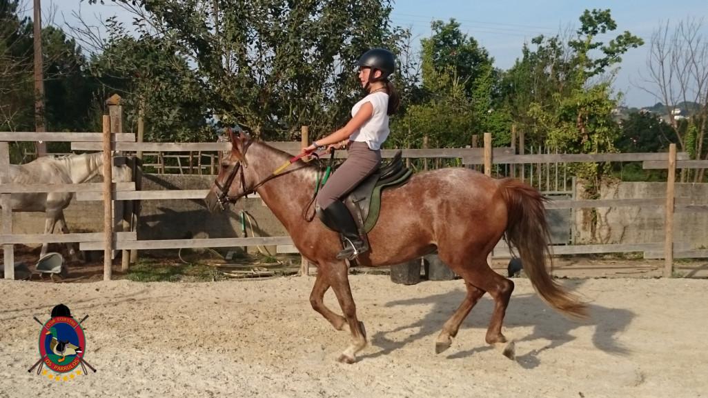 Clases de equitación_paseos a caballo_hipica La Coruna_Os Parrulos_91