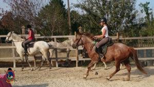 Clases de equitación_paseos a caballo_hipica La Coruna_Os Parrulos_92