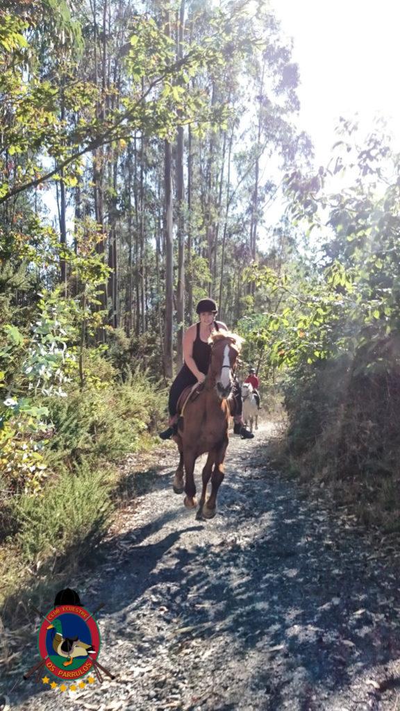 rutas-a-caballo_clases-de-equitacion_hipica-la-coruna_os-parrulos_caballos_r10
